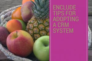 blog-adoption-tips